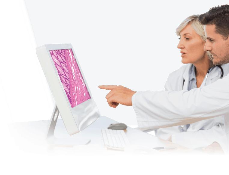 Lab Technicians at Computer